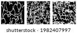 set of black and white grunge... | Shutterstock .eps vector #1982407997