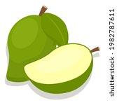 green mango fruit with cut in... | Shutterstock .eps vector #1982787611