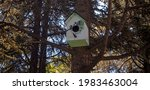 Handmade Birdhouse Mounted On A ...