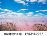 Simple Landscape Of Pink Water...