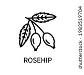 rosehip line icon in simple... | Shutterstock .eps vector #1983519704