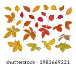colorful autumn leaves set ... | Shutterstock .eps vector #1983669221