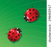 couple of red beetle  on a... | Shutterstock .eps vector #198405917