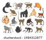 Cartoon primates. Chimpanzee and gorilla monkeys. Wild animals set with tails. Cute apes sit or climb on trees. Tropical gibbon and orangutan. Funny capuchin or macaque. Vector fauna