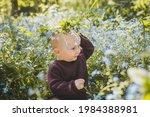 a nine month old boy wearing a... | Shutterstock . vector #1984388981
