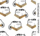 cats in a box. fat cats or...   Shutterstock . vector #1984392641