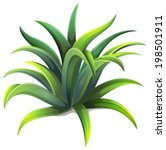 illustration of a dwarf agave... | Shutterstock .eps vector #198501911