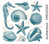 blue shell set | Shutterstock .eps vector #198531065