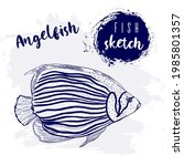 vintage animal angelfish marine ...   Shutterstock .eps vector #1985801357