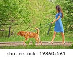 Stock photo beautiful young woman in dress is walking with dog in summer park 198605561