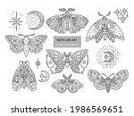 boho butterfly line vector set. ... | Shutterstock .eps vector #1986569651