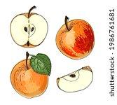 apple red and orange. vector...   Shutterstock .eps vector #1986761681