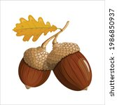 two acorns on a branch. yellow...   Shutterstock .eps vector #1986850937