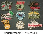 vector set of custom insect and ... | Shutterstock .eps vector #198698147
