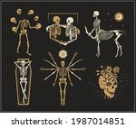 collection of skeletons logos... | Shutterstock .eps vector #1987014851