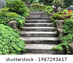 Wooden Stairs In A Green Garden