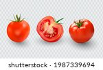 tomato set. red tomato... | Shutterstock .eps vector #1987339694