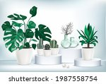 vector isolated collection...   Shutterstock .eps vector #1987558754