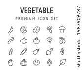 premium pack of vegetable line...