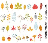 Set Of Hand Drawn Autumn Flora...