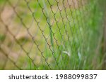 Blurred Bokeh Background Of...
