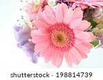 pink gerbera wedding bouquet... | Shutterstock . vector #198814739