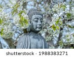 Buddha Face Under The Flowering ...