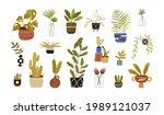 set of different foliage indoor ... | Shutterstock .eps vector #1989121037