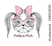 fashion portrait of Shih Tzu doggy girl in pink, hand drawn vector - stock vector