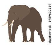 vector illustration of elephant ...   Shutterstock .eps vector #1989632114
