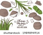 panela sugar sketch. hand drawn ... | Shutterstock .eps vector #1989894914
