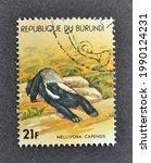 Small photo of Burundi - circa 1977 : Cancelled postage stamp printed by Burundi, that shows Honey Badger (Mellivora capensis), circa 1977.