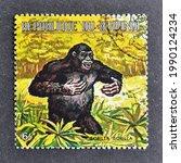 Small photo of Burundi - circa 1971 : Cancelled postage stamp printed by Burundi, that shows Gorilla (Gorilla gorilla), circa 1971.