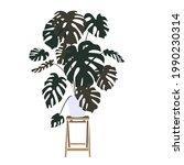 an vector illustration of plant ...   Shutterstock .eps vector #1990230314