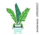 an vector illustration of plant ...   Shutterstock .eps vector #1990230317