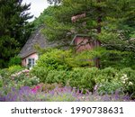 Pink House Amongst The Flowers...