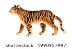 wild tiger isolated on white... | Shutterstock .eps vector #1990927997