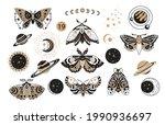 Bohemian Boho Butterfly...