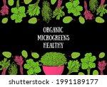 microgreens hand drawn vector... | Shutterstock .eps vector #1991189177
