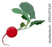 vector isolated illustration of ...   Shutterstock .eps vector #1991197124