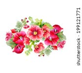 Watercolor Mallow Flowers On...