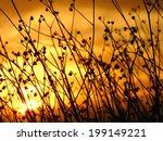 desert brush sunset silhouette | Shutterstock . vector #199149221