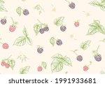 blackberry. ripe berries on... | Shutterstock .eps vector #1991933681