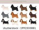 american cocker spaniel all... | Shutterstock .eps vector #1992333881