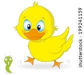 A Cute Little Ducks In The...