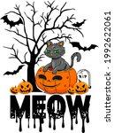 cat lover vector illustration... | Shutterstock .eps vector #1992622061