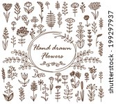 hand drawn vector flowers. can... | Shutterstock .eps vector #199297937