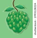 tropical fruit custard apple... | Shutterstock .eps vector #1993128224