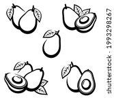 avocado set. collection icons... | Shutterstock .eps vector #1993298267