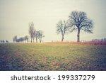 Vintage Photo Of Autumn Field...